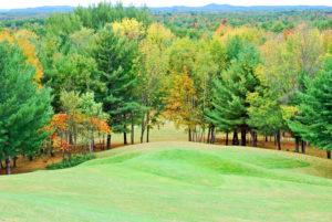The Earthen Dove Effigy Mound- Article