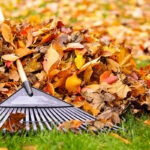Join The Highground for Their Annual Fall Cleanup Days